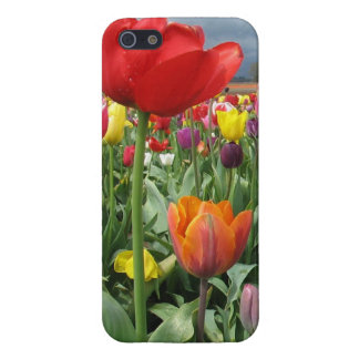 Tulips Field Cover For iPhone 5/5S