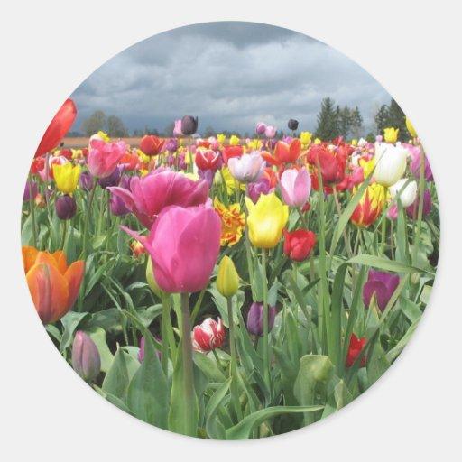 Tulips Field Sticker