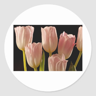 Tulips for You Round Sticker