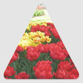 Tulips from Holland Triangle Sticker
