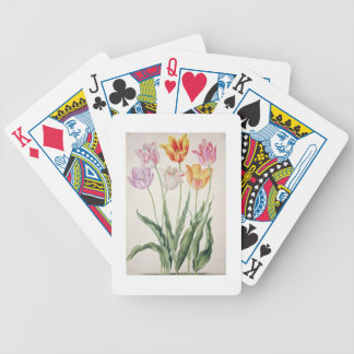 Tulips, from the 'Nassau Florilegium' (w/c on pape Bicycle Playing Cards
