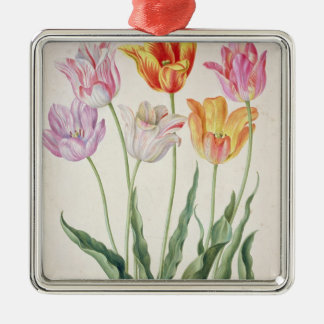 Tulips, from the 'Nassau Florilegium' (w/c on pape Christmas Ornament