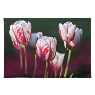 Tulips Garden Placemat