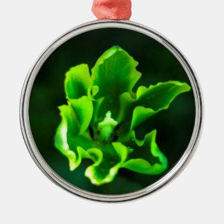 Tulips Green.jpg Christmas Ornament