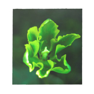 Tulips Green.jpg Notepad