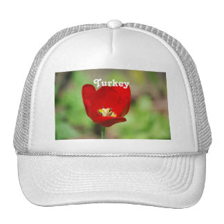 Tulips Mesh Hat