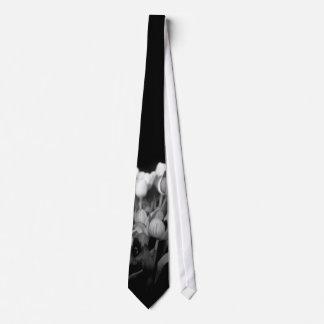 Tulips in Black & White Tie