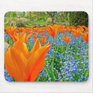 TULIPS IN GOLDERS HILL PARK MOUSE PADS