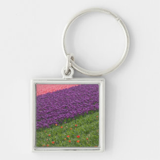 Tulips in Keukenhof Gardens, Amsterdam, 3 Key Ring