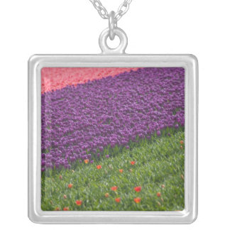 Tulips in Keukenhof Gardens, Amsterdam, 3 Silver Plated Necklace