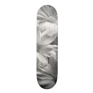 Tulips in Keukenhof Gardens, Holland. 2 Skateboards