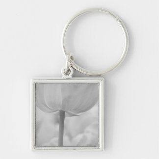 Tulips in Keukenhof Gardens, Holland. Silver-Colored Square Key Ring