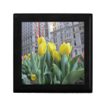 Tulips in New York City Gift Boxes