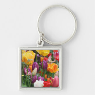 Tulips In Spring Keyring