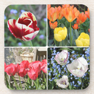 Tulips in the garden photo collage square beverage coasters