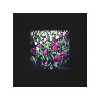 Tulips in the Garden Stretched Canvas Prints