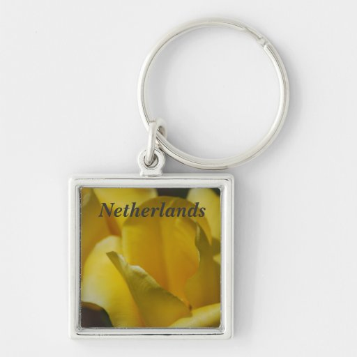 Tulips in the Netherlands Keychains