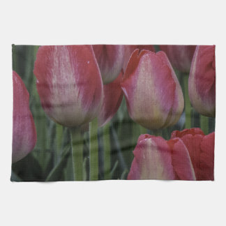Tulips in the Spring Towels