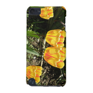 Tulips in the Sun iPod Case