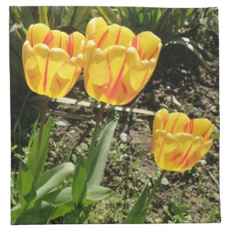 Tulips in the Sun Napkin