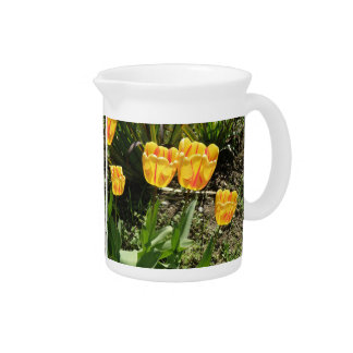 Tulips in the Sun Pitcher