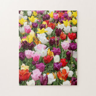 Tulips Jigsaw Puzzle