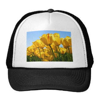 Tulips jpg trucker hats