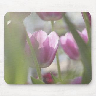 Tulips, Keukenhoff Gardens, Netherlands. Mouse Mat