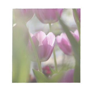 Tulips, Keukenhoff Gardens, Netherlands. Notepad