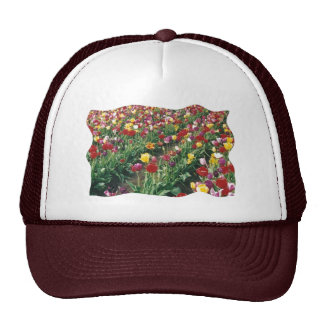 Tulips Maroon Curved Edge Design Hat