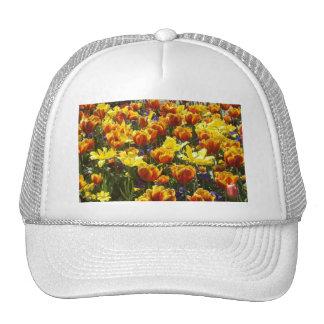 Tulips Mesh Hats