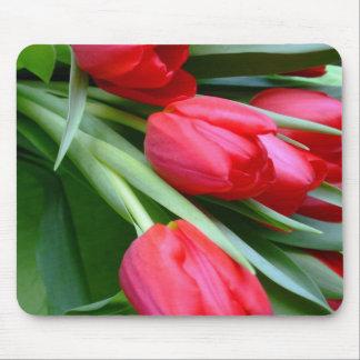 Tulips Mousepad
