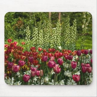 Tulips Mousepad | Mousepad Tulpen