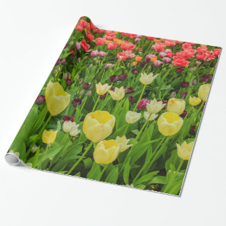 tulips on Glossy Wrapping Paper
