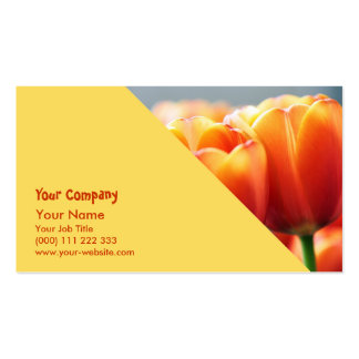 Tulips Pack Of Standard Business Cards