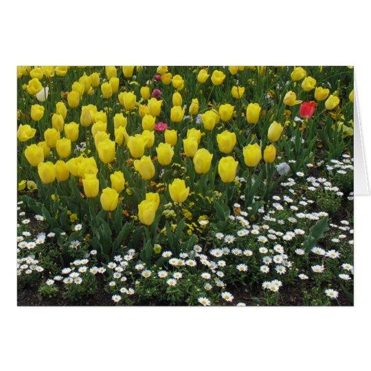 tulips, pansies, daisies card