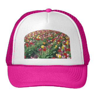 Tulips Pink Arch Edge Hat