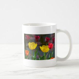 Tulips polychrome flowering, photo extrudes, mug