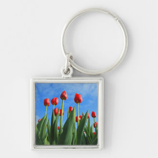 Tulips red flowers beautiful photo keychain
