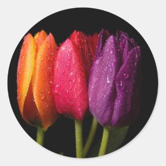 tulips round sticker