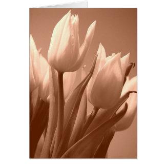 Tulips sepia card