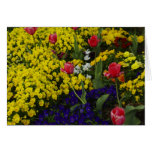 Tulips & Spring Flowers Greeting Card