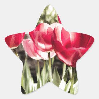 Tulips Star Sticker