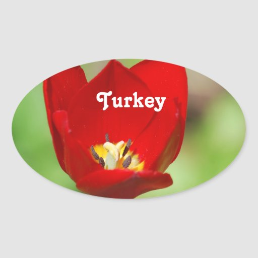 Tulips Oval Sticker