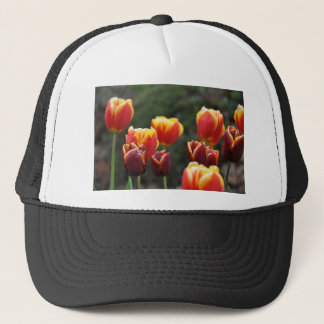 TULIPS TRUCKER HAT