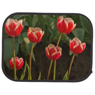 Tulips, Tulip Festival, Woodburn, Oregon, USA 1 Car Mat
