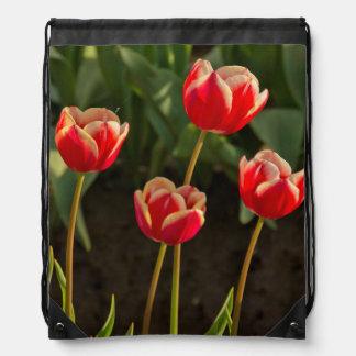 Tulips, Tulip Festival, Woodburn, Oregon, USA 1 Drawstring Bag