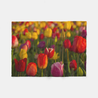 Tulips, Tulip Festival, Woodburn, Oregon, USA 2 Fleece Blanket