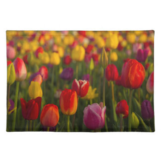 Tulips, Tulip Festival, Woodburn, Oregon, USA 2 Placemat