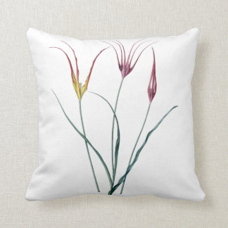 Tulips two sided cushion